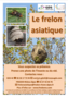 2018-04-20 Affiche frelon asiatique